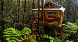 Escape Into The Rainforest When You Stay At This Charming Hawaii Treehouse