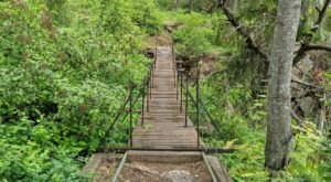 Walk Across A Beautiful Suspension Bridge On The Tubbs Hill Nature Trail In Idaho