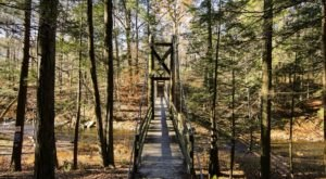 Hike To A Little-Known Suspension Bridge At Black Creek Preserve In New York