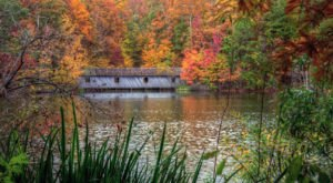 The 8 Best Places In Alabama To Experience Beautiful Autumn Colors