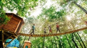 The Canopy Walkway At Arbor Day Farm Takes You High Above The Nebraska Trees