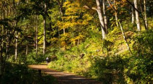 9 Of The Greatest Forest Hiking Trails Near Detroit For Beginners