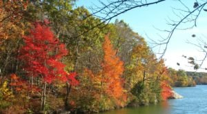 Lincoln Woods State Park Is The Most Peaceful Place To Experience Fall Foliage In Rhode Island