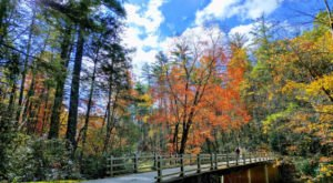 The Linville Falls In North Carolina Will Soon Be Surrounded By Beautiful Fall Colors