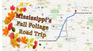 Take A 2-Hour Drive Through Mississippi To See This Year's Beautiful Fall Colors