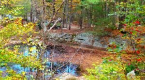 Find Peace At Ravenswood Park, A Colorful Swampy Woodland In Massachusetts