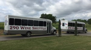 Road Trip To 18 Different Vineyards On The Texas Wine Shuttle
