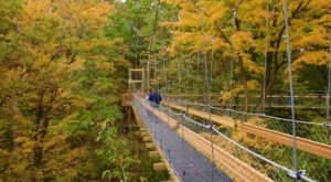 Murch Canopy Tour Near Cleveland Is The Ideal Way To See The Vivid Fall Foliage