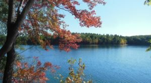 Take In Some Of The Most Gorgeous Fall Foliage At Walden Pond In Massachusetts