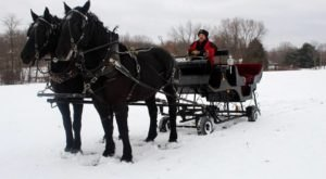 Take A Sleigh Ride Through An Idyllic Christmas Tree Farm At Port Farms In Pennsylvania