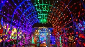 Phipps Conservatory's Night Garden In Pennsylvania Is A Magical Wintertime Fairyland Experience
