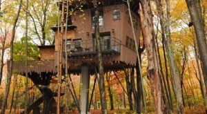 Getaway To A Treehouse Hotel At Winvian Farm, A Themed Hotel In Connecticut