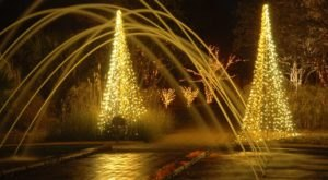 Adventure Through A Mile Of A Million Twinkling Holiday Lights At The Daniel Stowe Botanical Garden In North Carolina