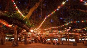 There's No Event More Festive Than Hawaii's Lahaina Banyan Tree Lighting Festival