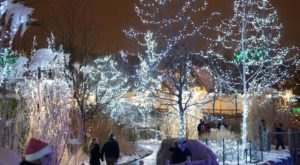 The Cincinnati Zoo Is Decked Out In Thousands Of Glittering Lights For Your Holiday Enjoyment