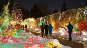 Take An Enchanting Winter Walk Through Blossoms Of Light In Colorado