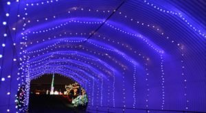 4 Drive-Thru Christmas Lights Displays In North Carolina The Whole Family Can Enjoy