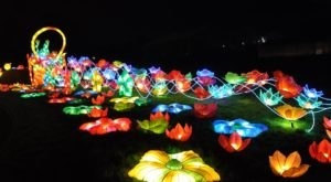 The Atlanta Chinese Lantern Festival Is Changing Georgia Into A Glow-In-The-Dark Wonderland
