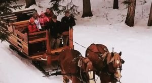 Take A Sleigh Ride To A Lantern-Lit Dinner Cabin In Montana At Lone Mountain Ranch