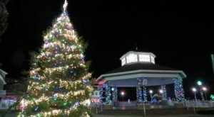 The Tallest Christmas Tree In Delaware Is A Towering And Twinkling Display Of Lights