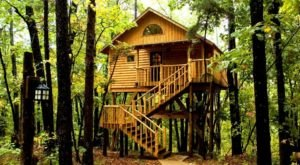 Experience The Fall Colors Like Never Before With A Stay At The Treehouse Cottages In Arkansas