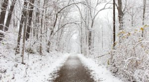 9 Picturesque Trails Around Detroit That Are Perfect For Winter Hiking