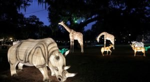 Get Into The Holiday Spirit With A Visit To The Audubon Zoo Lights In New Orleans