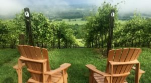 Travel To The Heart Of Virginia Wine Country And Enjoy The Stunning Views From Bluemont Vineyard