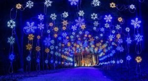 7 Christmas Light Displays In Missouri That'll Instantly Get You In The Holiday Spirit