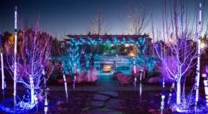 The Garden Christmas Light Displays At Santa Fe Botanical Garden In New Mexico Is Pure Holiday Magic