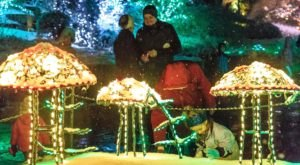 The Garden Christmas Light Display At Brookside Gardens In Maryland Is Pure Holiday Magic