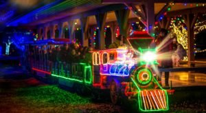 Children Of All Ages Will Love The Magical Holiday Light Experience At The Roswell Zoo In New Mexico