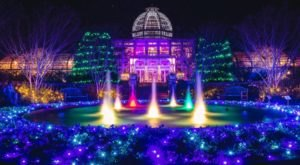 Walk Through One Million Holiday Lights At The Lewis Ginter GardenFest Of Lights In Virginia