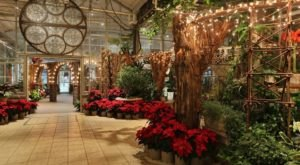 The Garden Christmas Light Display At Frederik Meijer Gardens In Michigan Is Pure Holiday Magic