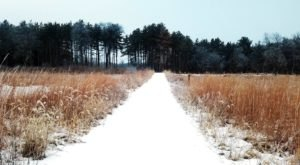 You'll Have A Blast When You Hit The Trails With Snowshoes At Jester Park In Iowa