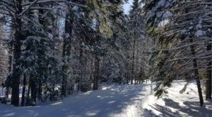 Aroostook State Park In Maine Completely Transforms Every Winter, Its Frozen Beauty Is Unforgettable