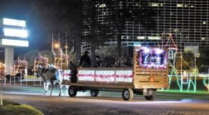 Journey Through Magical Holiday Lights On A Horse-Drawn Amish Wagon In Louisiana