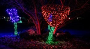 The Festival Of Lights In Missouri Is A Magical Wintertime Fairyland Experience