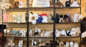 The Alpaca Boutique Near Cleveland Makes For A Fun Family Day Trip