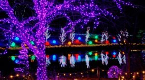 The Garden Christmas Light Displays At ChristmasTown Near Cincinnati Are Pure Holiday Magic