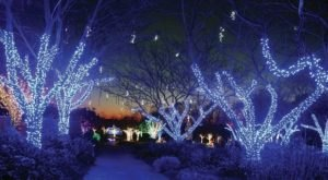 The Winter Walk Of Lights In Virginia Is A Magical Wintertime Fairyland Experience