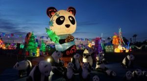 New York City Is Slated To Host Hello Panda Festival, The Largest Lantern Event In North America
