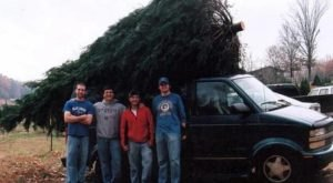 Create New Holiday Traditions This Season By Visiting Mississippi's Merry Christmas Tree Farm