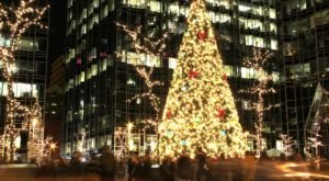 The Magical Pittsburgh Christmas Tree That Comes Alive With Countless Lights