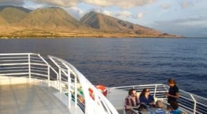 Take A Thanksgiving Day Cruise With The Pacific Whale Foundation In Hawaii For A Unique Holiday Outing