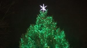 Get Your Holiday Fix In One Day At Westfield In Lights, Indiana's All-In-One Christmas Festival