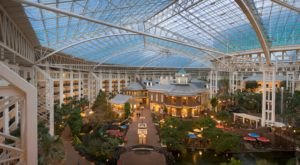 Adventure Through An Enchanted Wonderland Of Lights And Activities At The Gaylord Opryland Resort In Tennessee