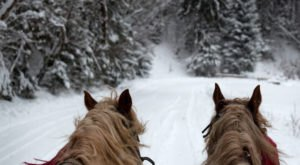 Enjoy Hot Cocoa And Carriage Rides In The Lorain County Metro Parks Near Cleveland This Winter