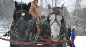 Take A Sleigh Ride Through An Idyllic Christmas Tree Farm At Dave Russell's In Vermont