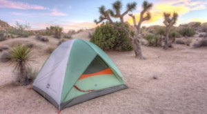 Pitch A Tent This Winter At Jumbo Rocks Campground In The Southern California Desert For A Breezy Overnighter Under The Stars